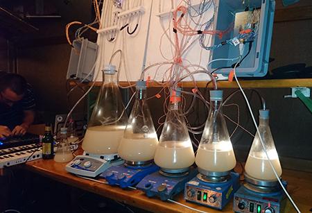 Kolumne: Living Instruments – Sinneserweiterung durch Sensoren und Computer