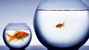 Kolumne: Grand Challenges im Fokus der Forschung – Micro Challenges ungelöst